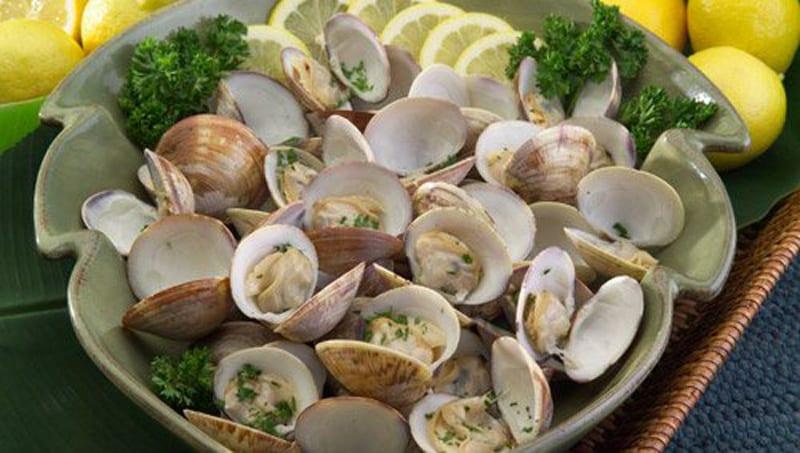 Explore Levy Countys Big Bend Shellfish Trail 02